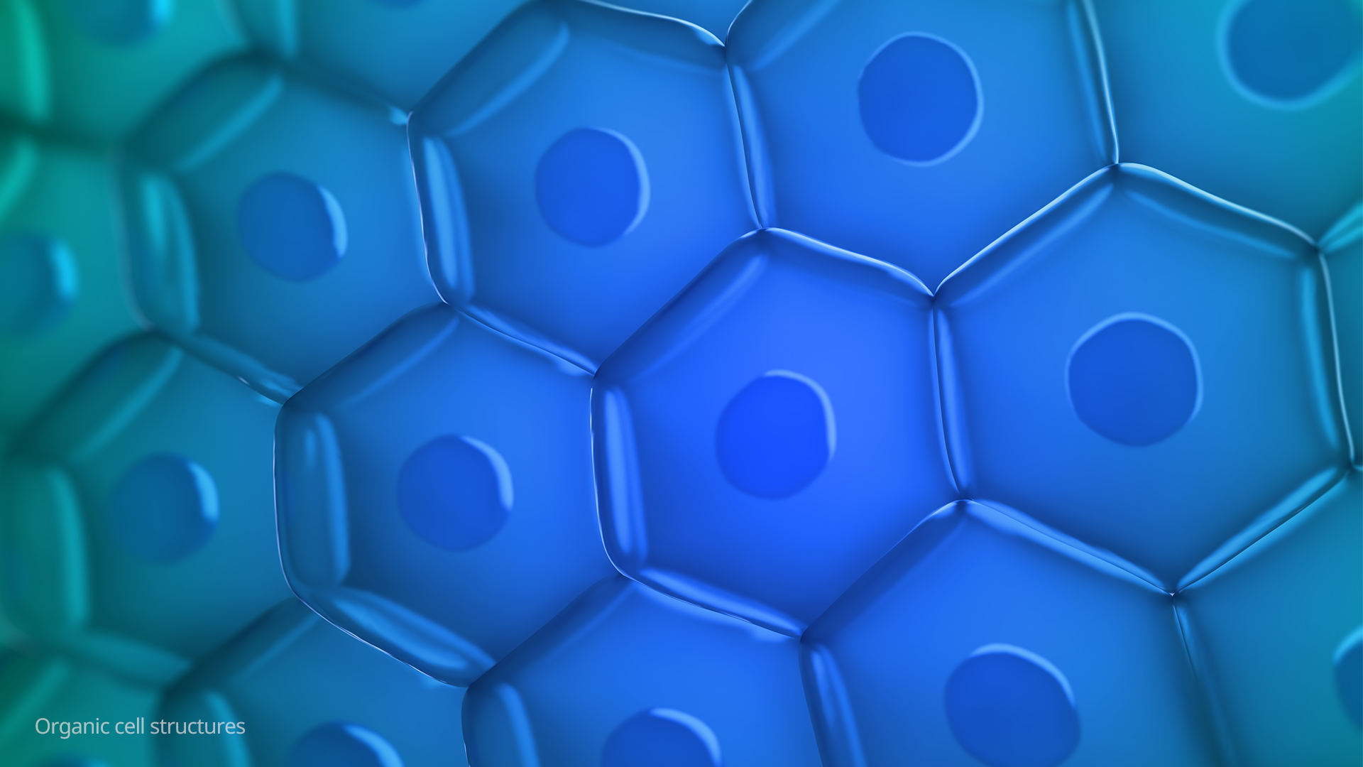 logo-origin-galleryorigin-03_cell_structures