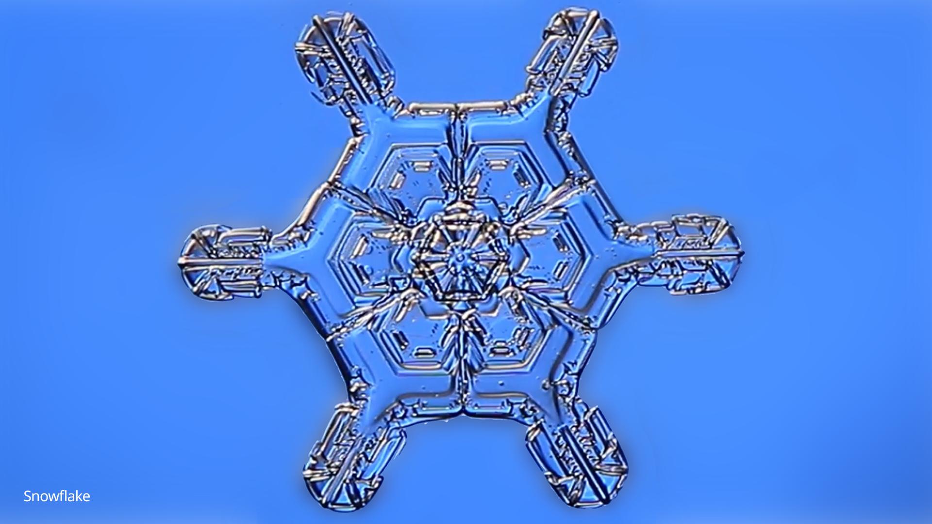 logo-origin-galleryorigin-11_snowflake